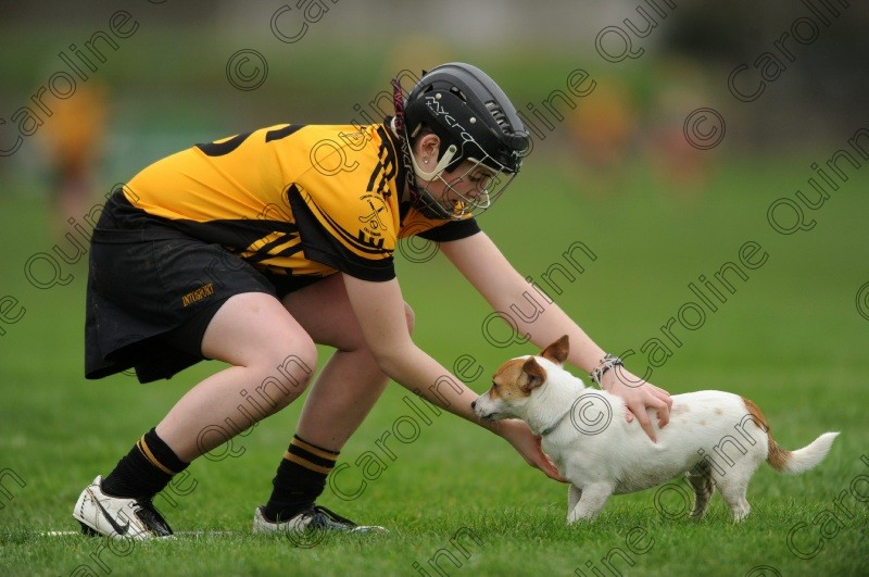 CQU 5360 