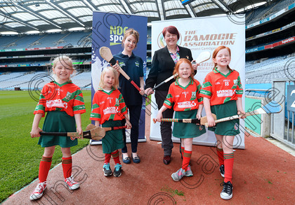 DSC 0806a 