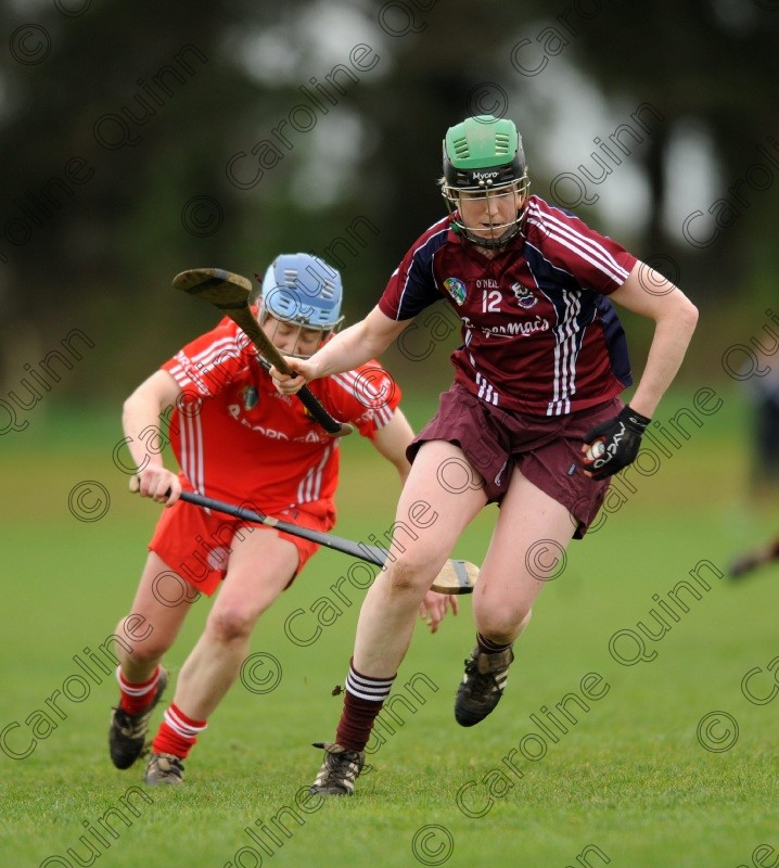 CQU 4390 