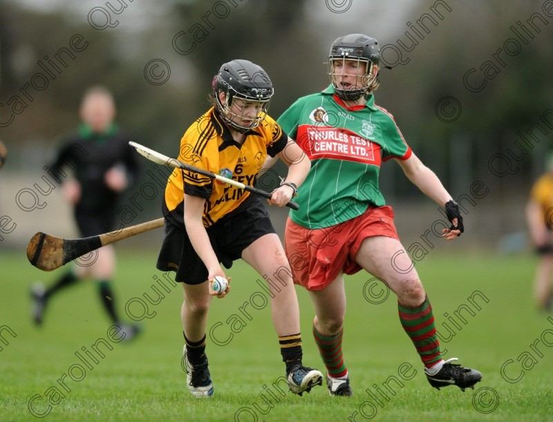 CQU 5393 