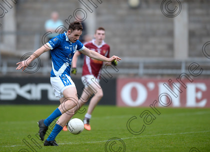 DSC 9368a 