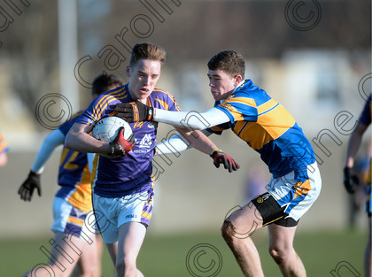DSC 0719a 