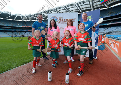 DSC 0733a 