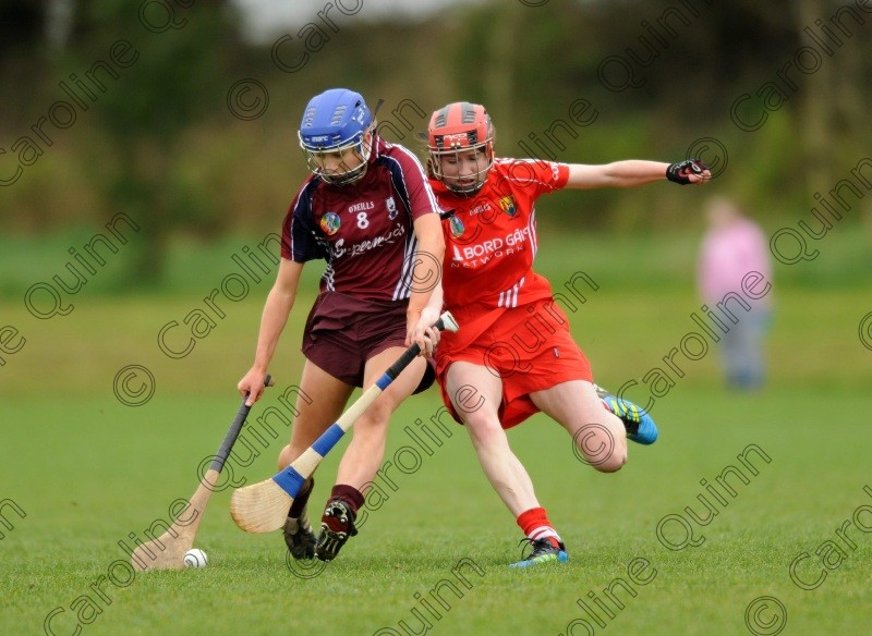 CQU 4347 