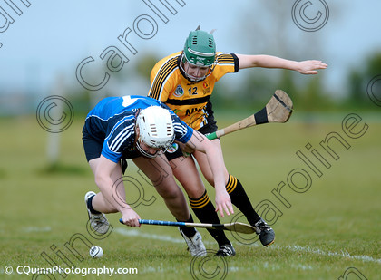 DSC 1785 